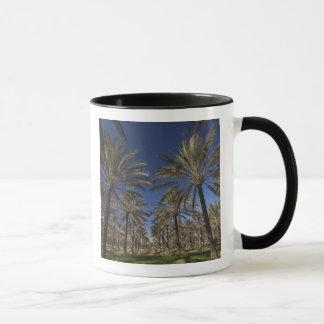 Tunisia, Sahara Desert, Douz, Zone Touristique, 2 Mug