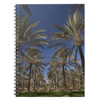 Tunisia, Sahara Desert, Douz, Zone Touristique, 2 Spiral Note Books