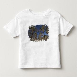 Tunisia, Sahara Desert, Douz, Zone Touristique, 2 Toddler T-Shirt