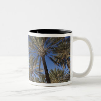Tunisia, Sahara Desert, Douz, Zone Touristique, 2 Two-Tone Coffee Mug