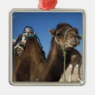 Tunisia, Sahara Desert, Douz, Zone Touristique, Silver-Colored Square Decoration