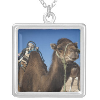 Tunisia, Sahara Desert, Douz, Zone Touristique, Silver Plated Necklace