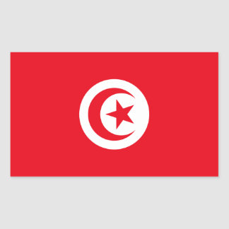 Tunisia/Tunisian Flag Rectangular Sticker