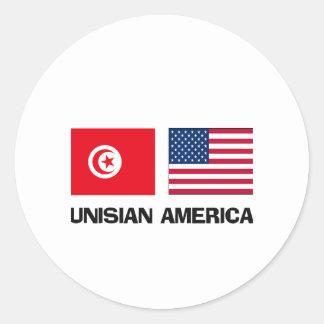 Tunisian American Stickers