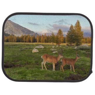 Tuolumne Meadow, Yosemite Car Mat