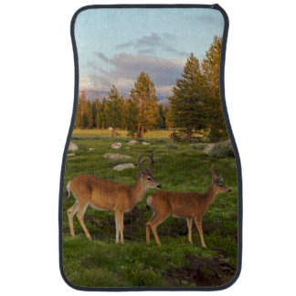 Tuolumne Meadow, Yosemite Car Mat