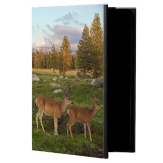 Tuolumne Meadow, Yosemite iPad Air Cover