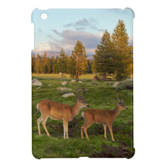 Tuolumne Meadow, Yosemite iPad Mini Case