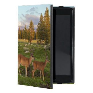 Tuolumne Meadow, Yosemite iPad Mini Cover