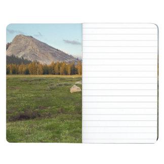 Tuolumne Meadow, Yosemite Journal
