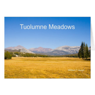 Tuolumne Meadows Yosemite California Products Greeting Card
