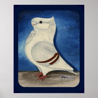 Turbit Pigeon 1979 Poster