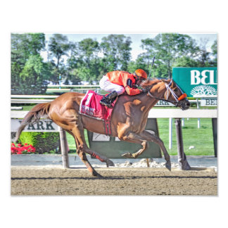 Turco Bravo Winner of the Flat Out Stakes Photo
