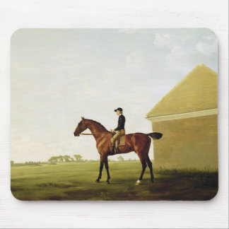 Turf, c.1765 (oil on canvas) (see 152743) mouse mat