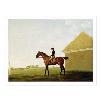 Turf, c.1765 (oil on canvas) (see 152743) postcard