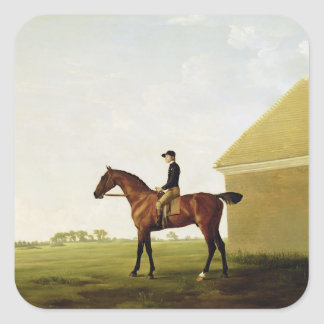 Turf, c.1765 (oil on canvas) (see 152743) square sticker