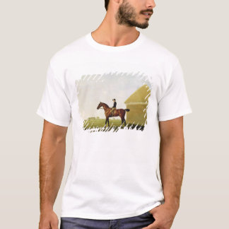 Turf, c.1765 (oil on canvas) (see 152743) T-Shirt