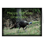 Turkey 6332-1  customise any occasion greeting cards