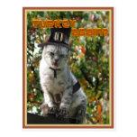 TURKEY AGAIN? Pilgrim Cat Post Cards