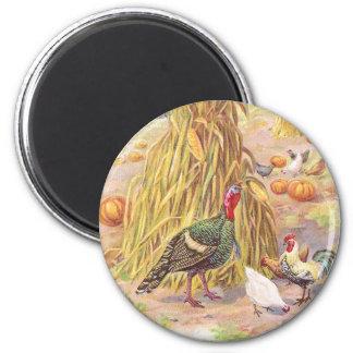 Turkey and Flock of Chickens Vintage Thanksgiving 6 Cm Round Magnet