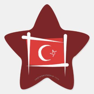 Turkey Brush Flag Star Sticker