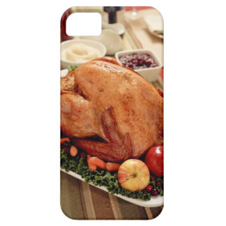 Turkey Dinner Meal iPhone 5 Case