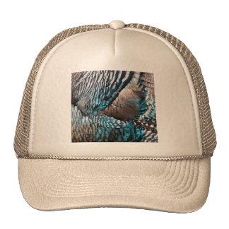 Turkey feathers hat