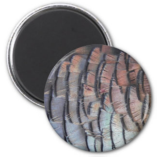 Turkey Feathers Magnet