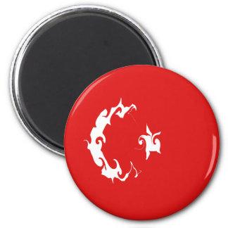 Turkey Gnarly Flag Fridge Magnets