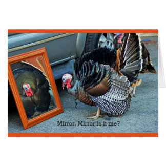 Turkey greeting card gazing at his reflection .