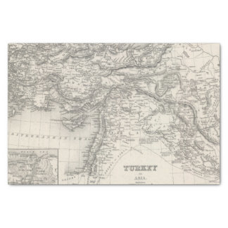 Turkey in Asia 4 Tissue Paper