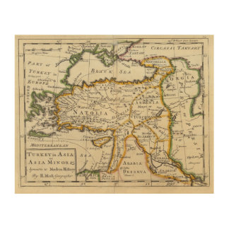 Turkey in Asia or Asia Minor Wood Canvas