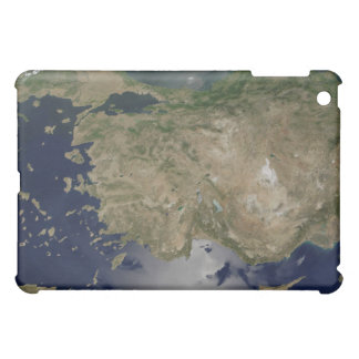 Turkey iPad Mini Case