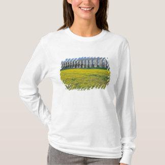 Turkey, Istanbul, Kemerburgaz, Uzunkemer (the T-Shirt