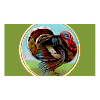 Turkey Painting Pack Of Standard Business Cards