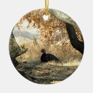 Turkey Paradise Ornament