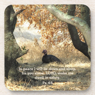 Turkey Paraside Psalm Coasters