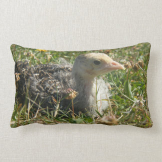 Turkey Poult Throw Pillow