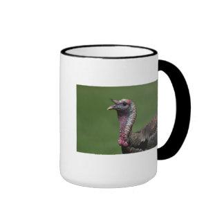Turkey Ringer Mug