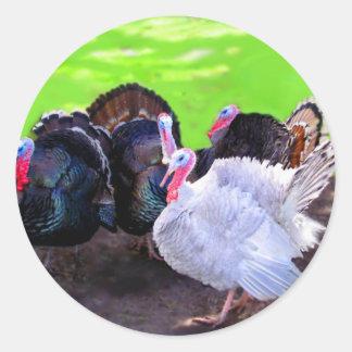 Turkey Time Round Sticker