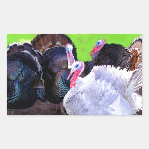 Turkey Time Sticker