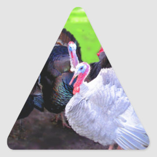 Turkey Time Triangle Sticker