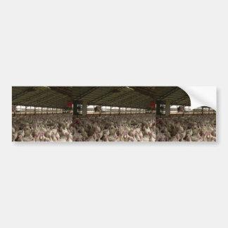Turkeys In A Poultry Barn Bumper Stickers