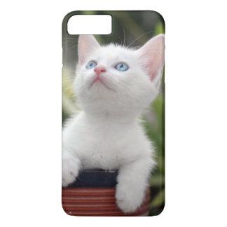 Turkish White Kitten (2.5 Months Old ) iPhone 8 Plus/7 Plus Case