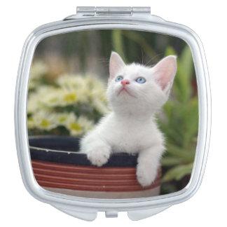 Turkish White Kitten (2.5 Months Old ) Makeup Mirrors