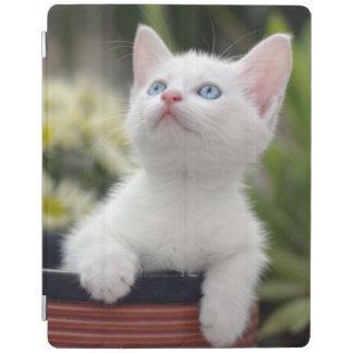 Turkish White Kitten iPad Cover