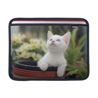 Turkish White Kitten MacBook Sleeve