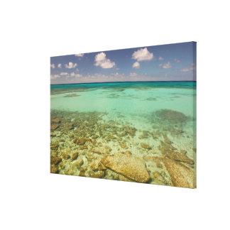 Turks and Caicos, Grand Turk Island, Cockburn 2 Canvas Print