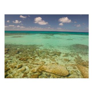 Turks and Caicos Grand Turk Island Cockburn 2 Postcard