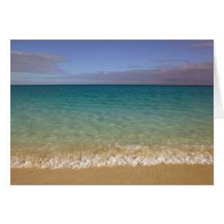 Turks and Caicos, Providenciales Island, Grace 2 Card
